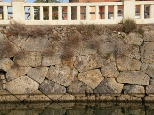 CINTA MURARIA DI ORBETELLO (immagine presa dal sito web terradegliuomini.com)